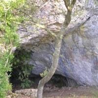 Cova de Joan de l'Os de Tartareu (Neolític)